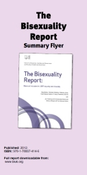 Bi Report Summary flyer